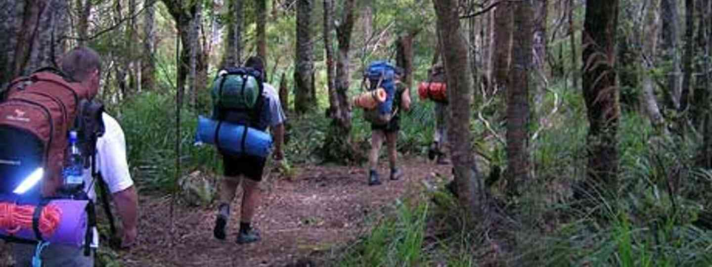 Be sure to check yourself for ticks when trekking and walking (Brett Taylor)
