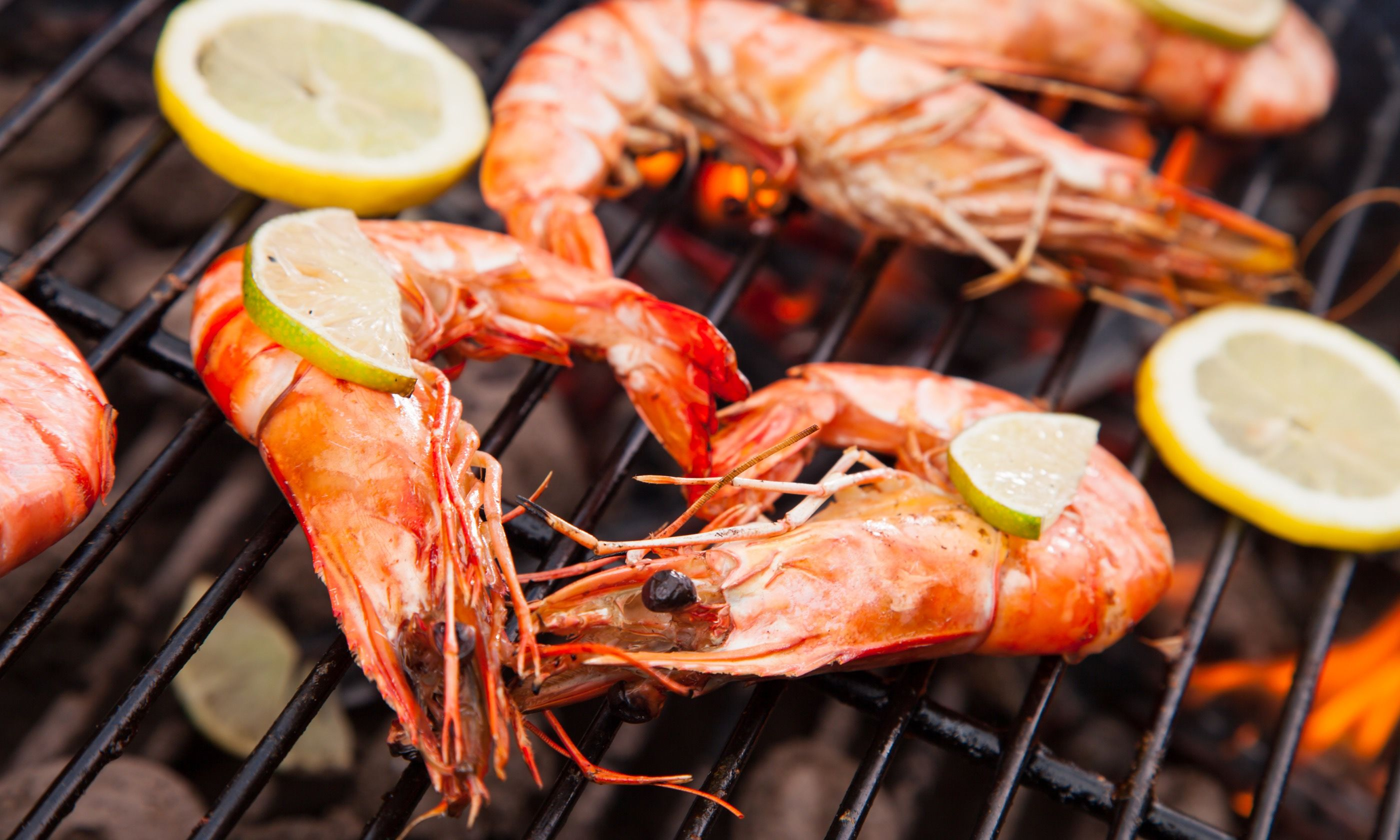 Prawns on the barbie. A Down Under Christmas treat (Dreamstime)