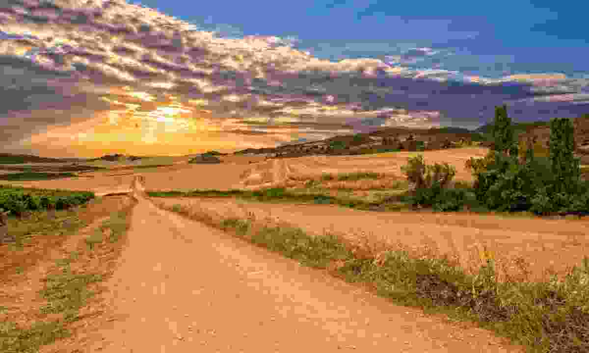 Camino de Santaigo (Shutterstock)