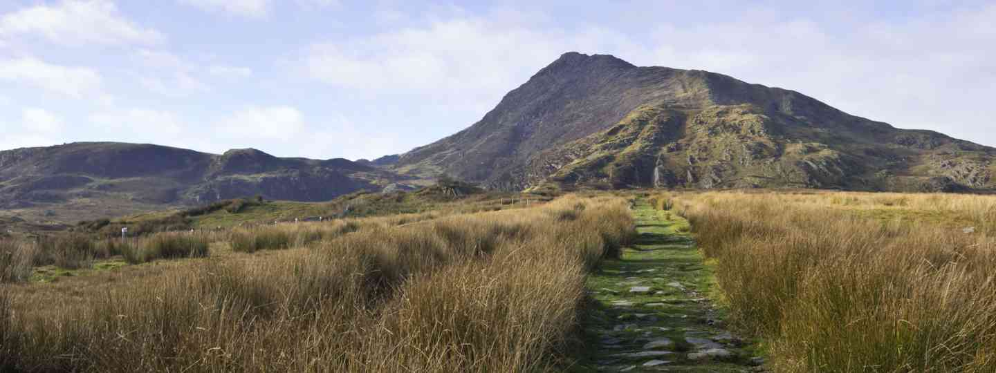 Path leading up to Moel Siabod (Dreamstime)