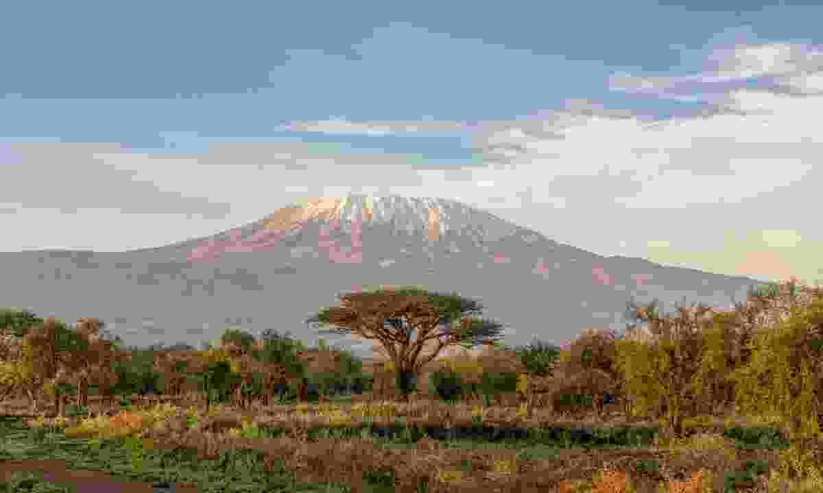 Kilimanjaro (Marie Curie)