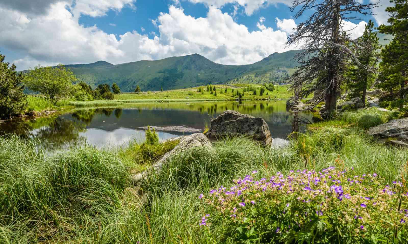 Lake Nassbodensee (Shutterstock)