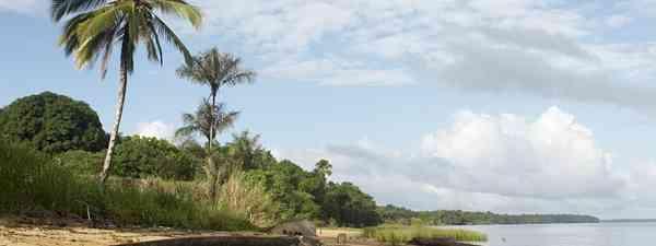 Dugout canoe on the shore of the Marowijne River near the village of Bigiston, Suriname(dreamstime.com)