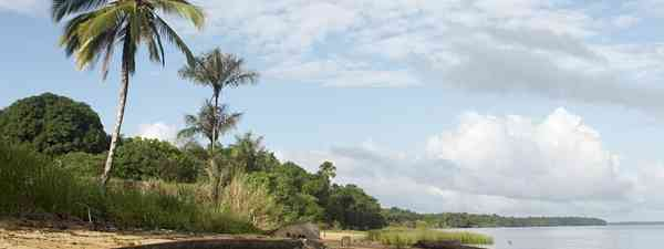Dugout canoe on the shore of the Marowijne River near the village of Bigiston, Suriname(dreamstime.com)