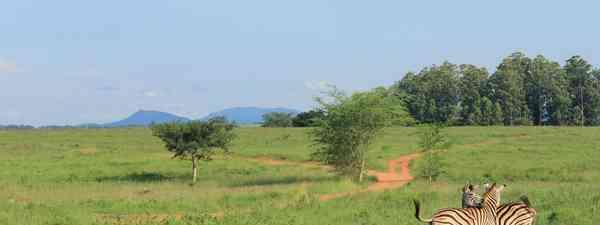 A typical Lesotho hut (Lyn Hughes