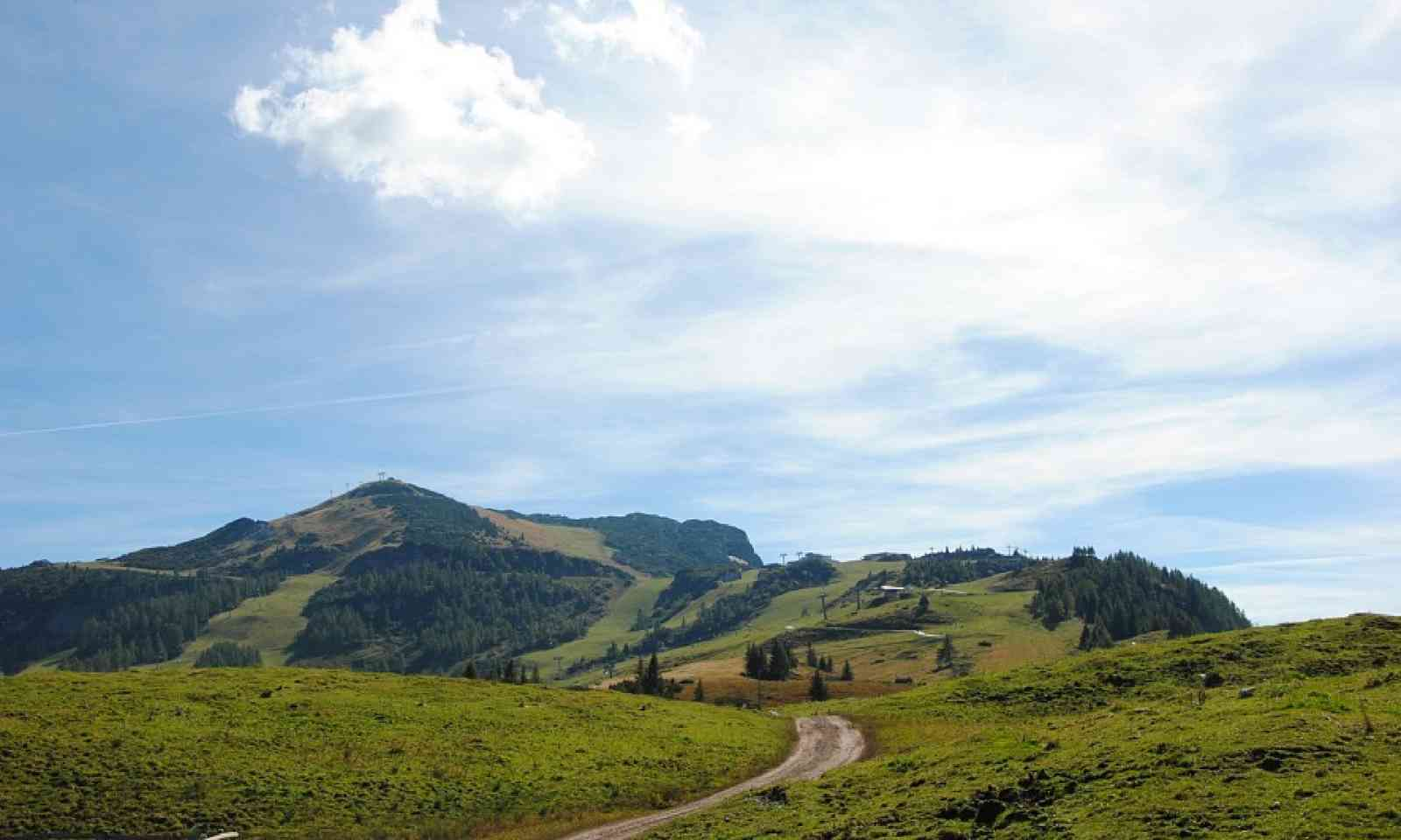 View from Möseralm towards the top of the Steinplatte (kitzbueheler-alpen.com)