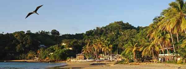 Trinidad and Tobago, Castara beach at sunrise (DrG)