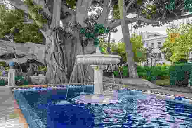Alameda Apodaca, Cadiz, Spain (Shutterstock)