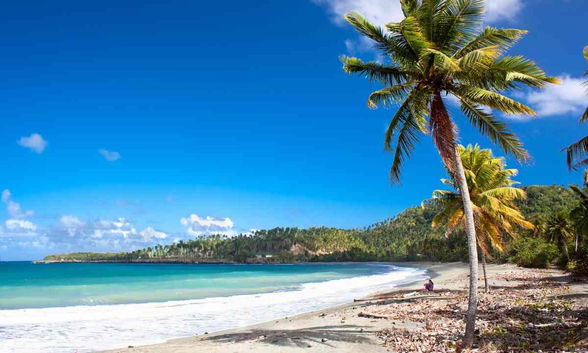 Beach near Baracoa (Shutterstock.com)