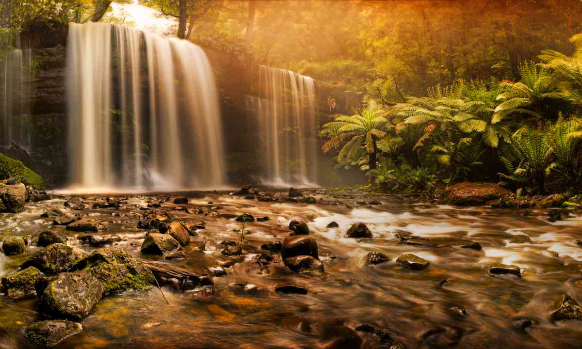 Russell Falls (Dreamstime)