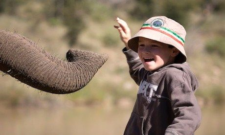 Boy with elephant (Will Gray)