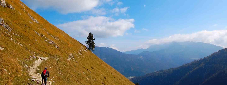 Mountain biking in Austria (Shutterstock)