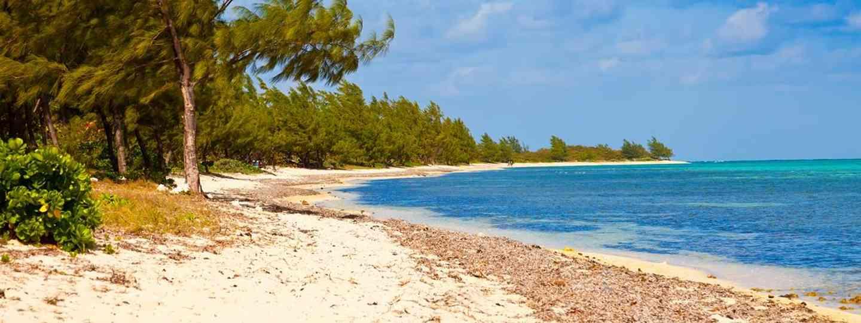 Cayman Islands, diving at Cobalt Ridge(Cayman Islands Department of Tourism)