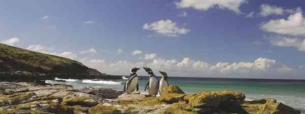 Falklands Islands, Port Stanley