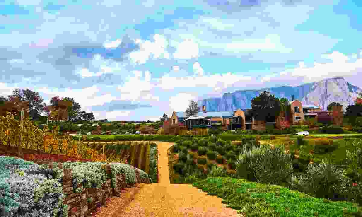 Stellenbosch in South Africa (Shutterstock)