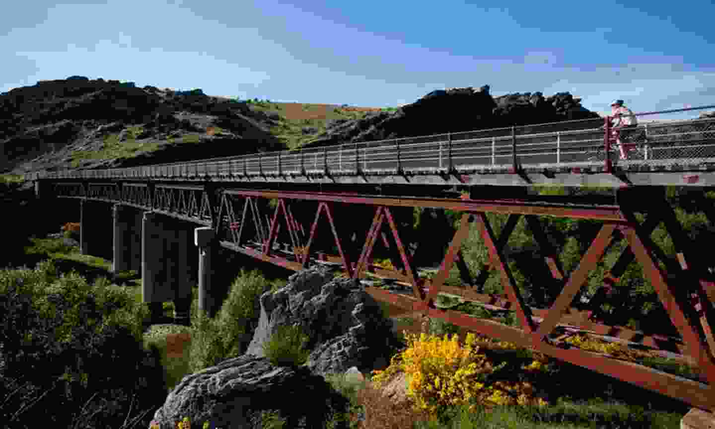 Cycling the Otago Rail Trail (Intrepid)