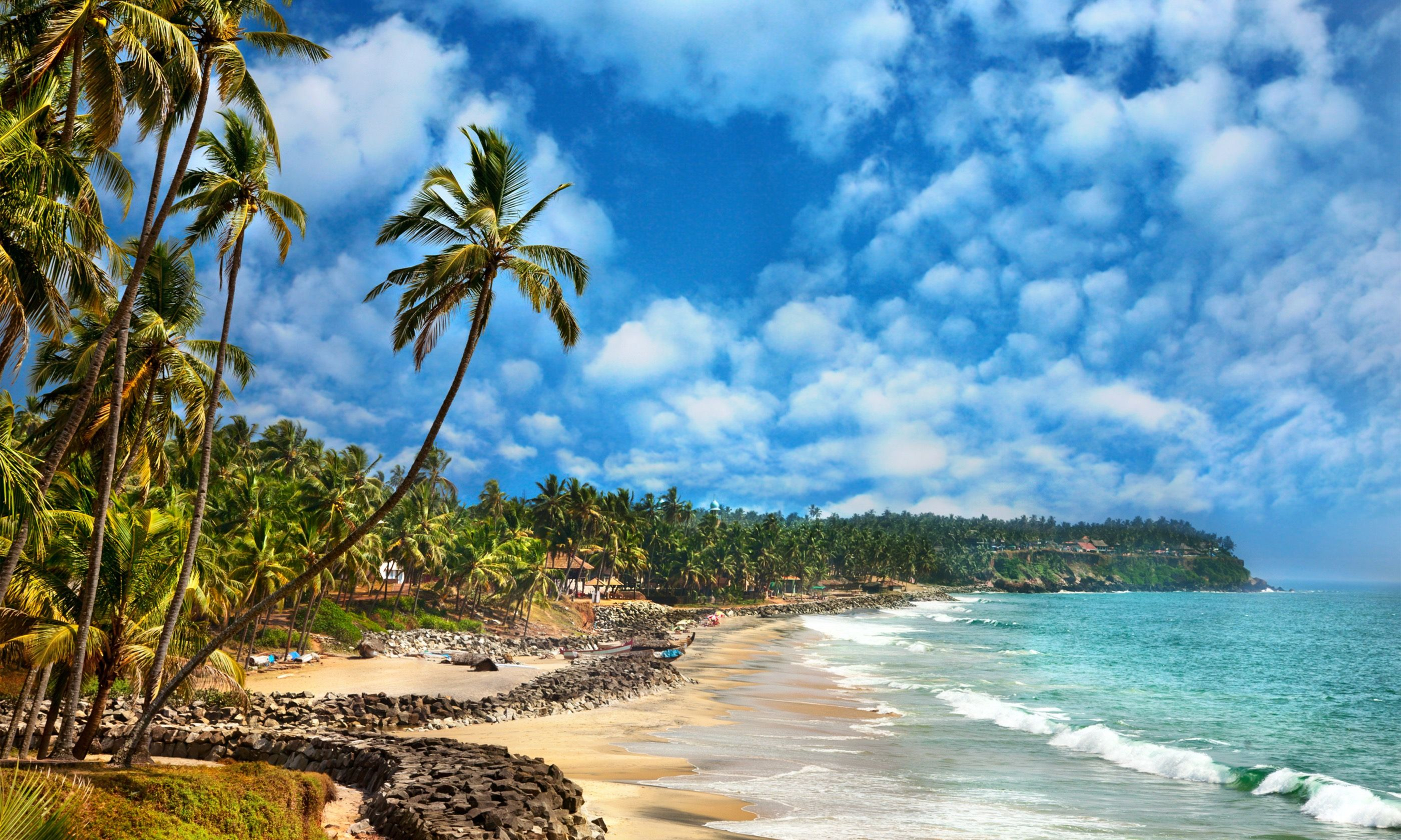 Varkala Beach (Dreamstime)