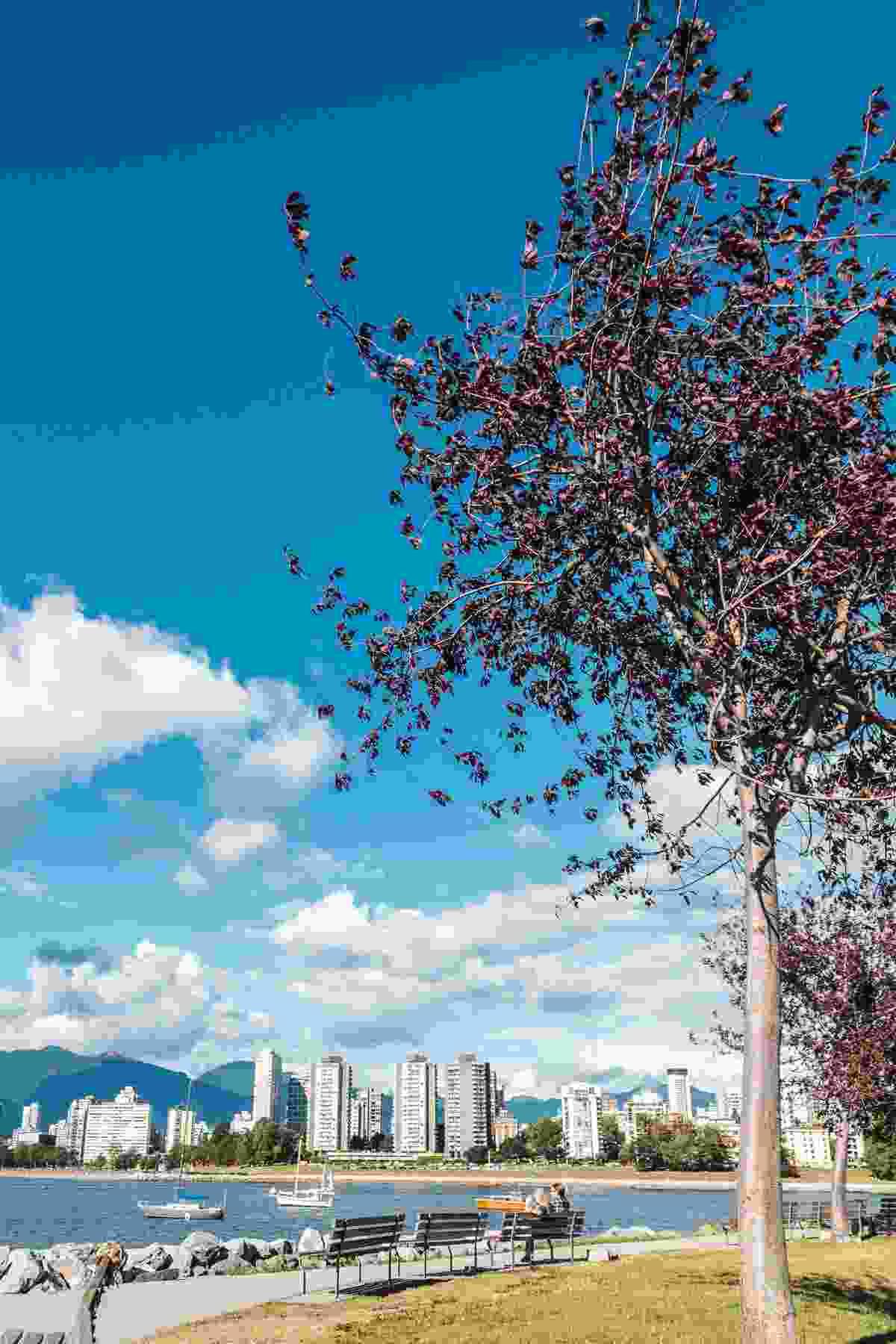 View from Kitsilano (Shutterstock)