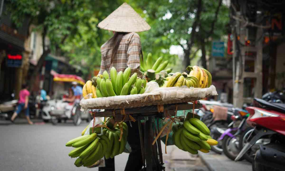 Hanoi fruit vendor, Vietnam (Shutterstock)