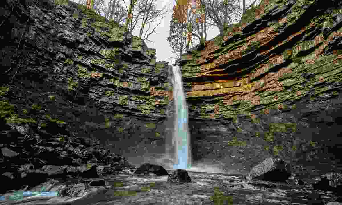Hardraw Force (Shutterstock)