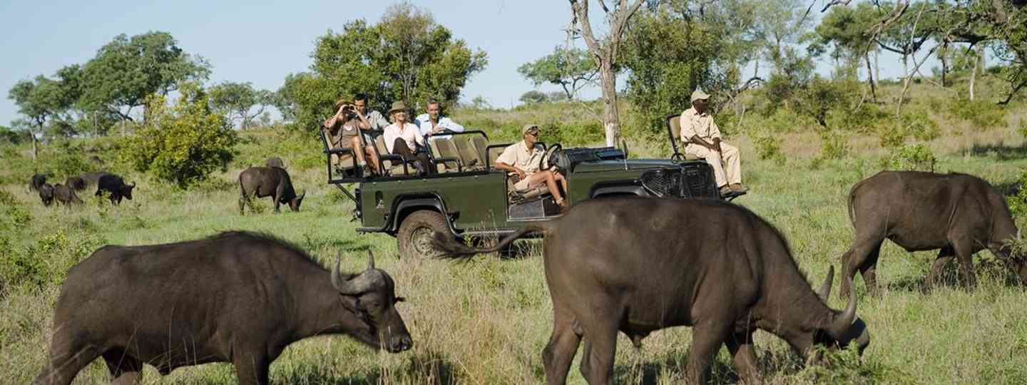 Volunteer and conservation can be a vital part of your travel experience