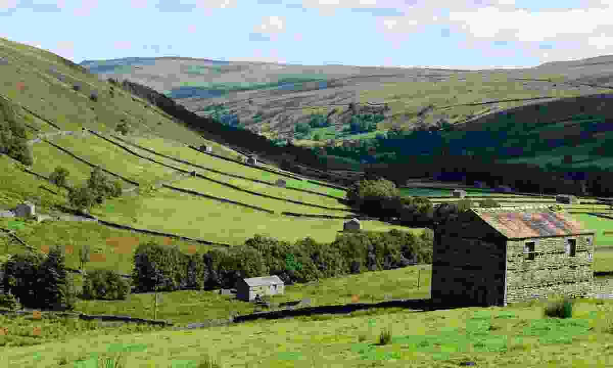 A valley in Swaledale (Shutterstock)