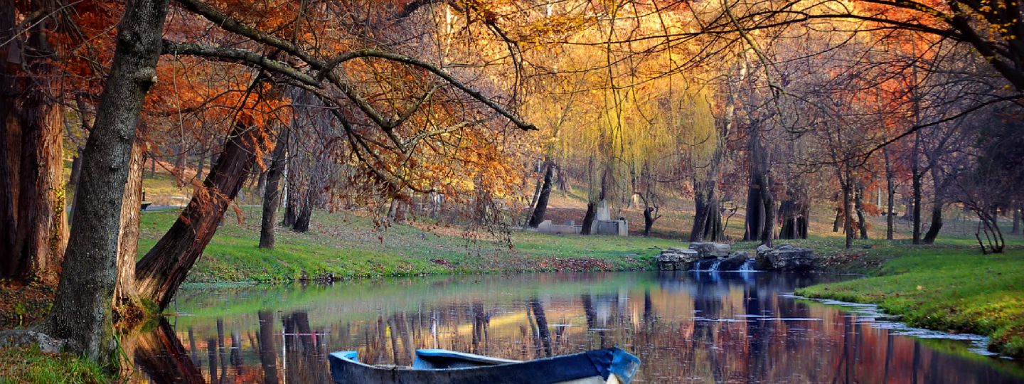 photography tips how to capture the magic of autumn wanderlust
