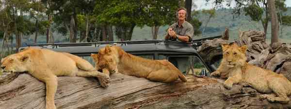 Sleeping Lions (Jonathan Scott)