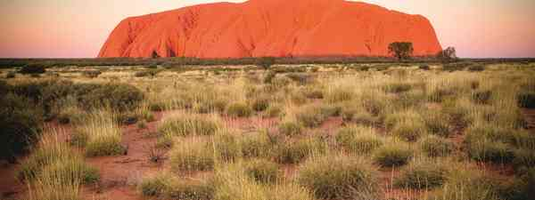 Australian outback, rising from seemingly nowhere in the deep centre of Australia, Uluru/Ayers Rock is one of the world's great natural wonders.