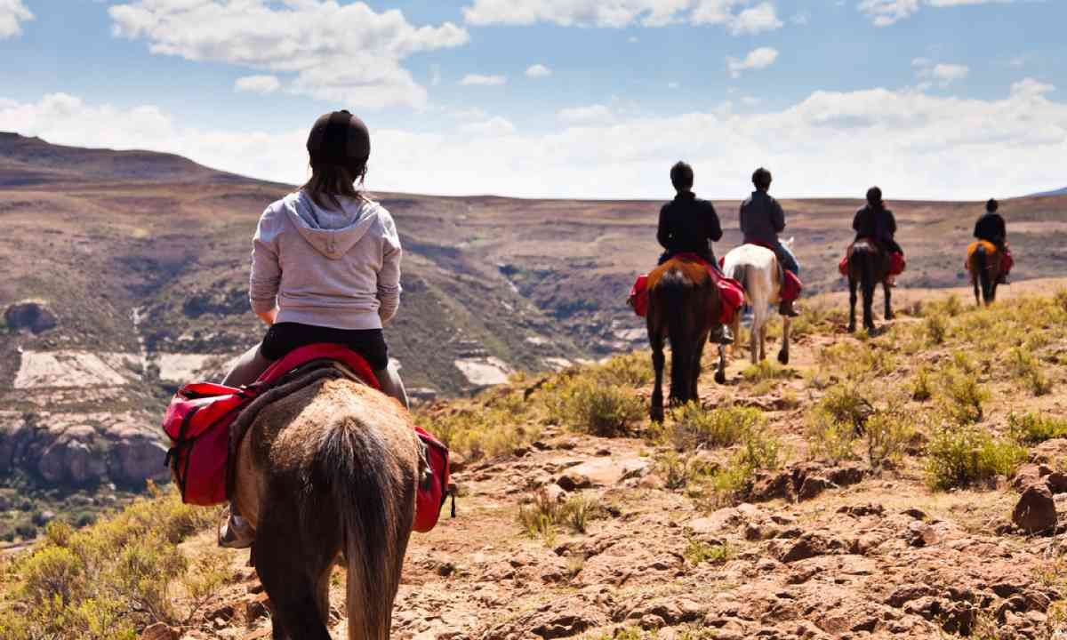 Pony trail adventure, Africa (Shutterstock)