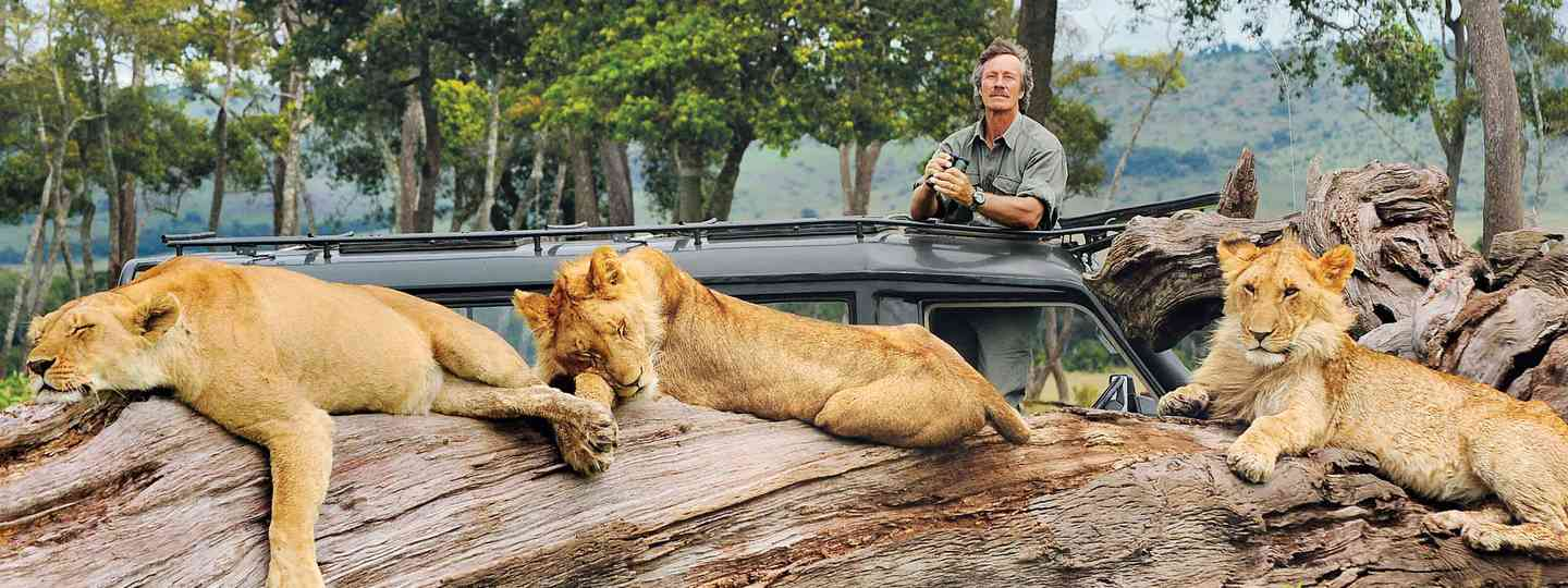 Big Cat Man Jonathan Scott with the much-loved Marsh Pride