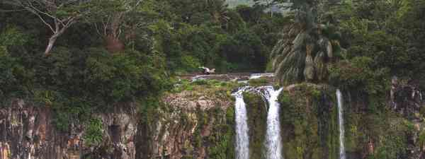 Tamarin Bay(Dana)
