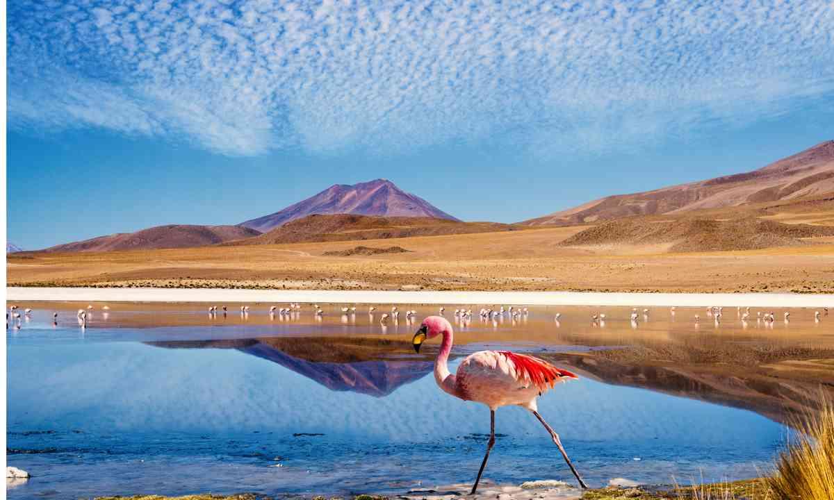 Laguna at Ruta de las Joyas Altoandinas (Shutterstock.com)