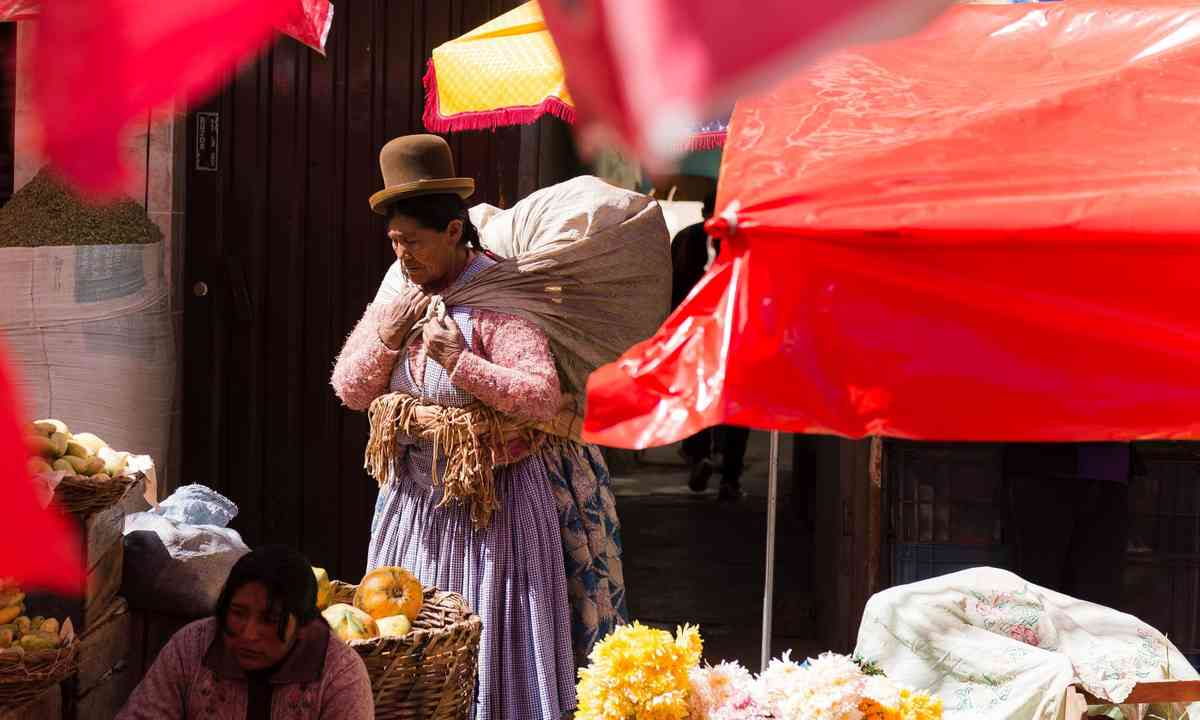 Local lady wandering through market, La Paz (Shutterstock.com)