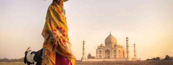 Indian woman with goats near the Taj Mahal (Shutterstock)