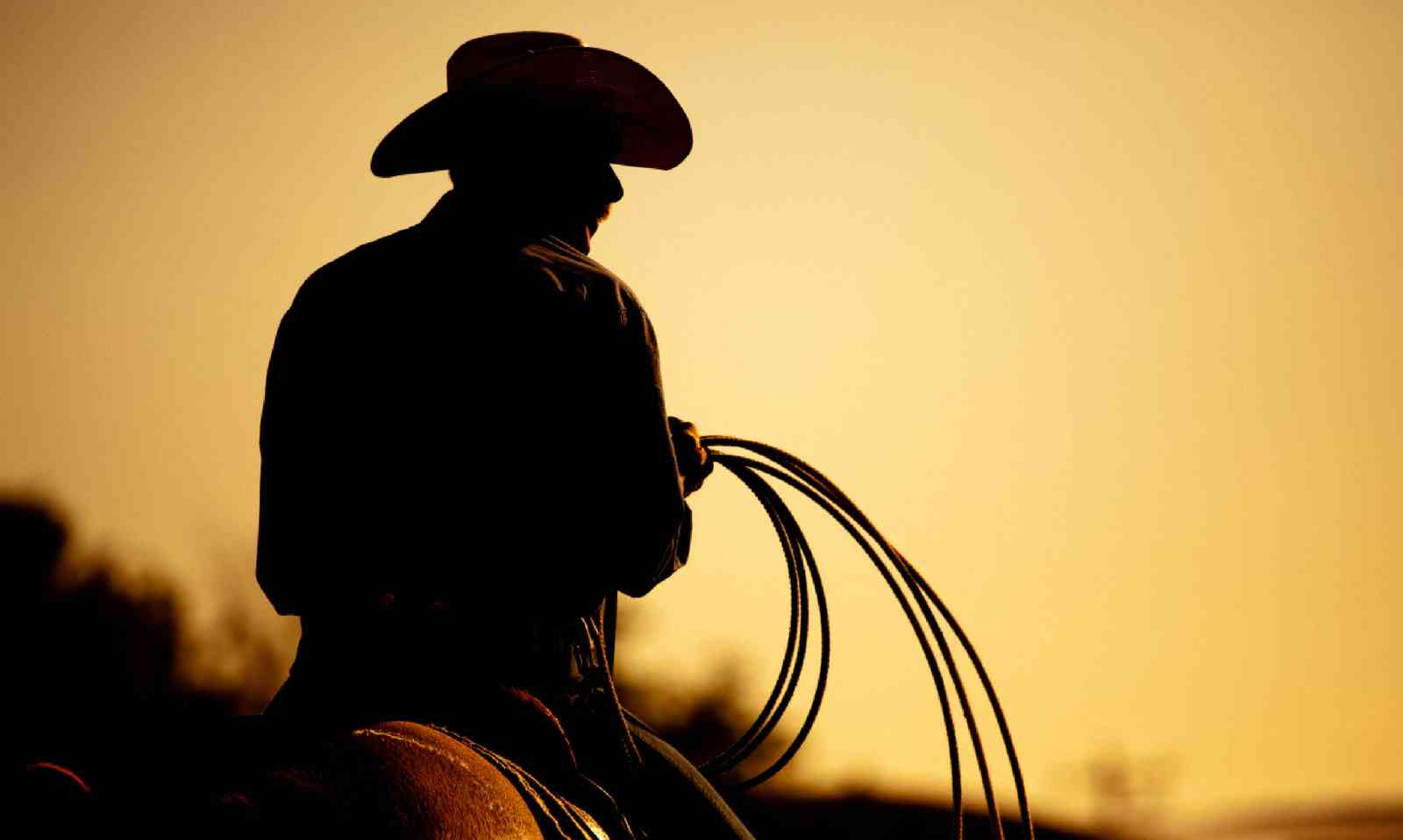 Cowboy with lasso silhouette (Shutterstock)