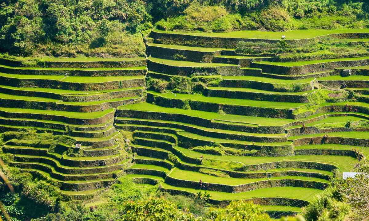 The rice terraces of Banaue (Shutterstock.com)