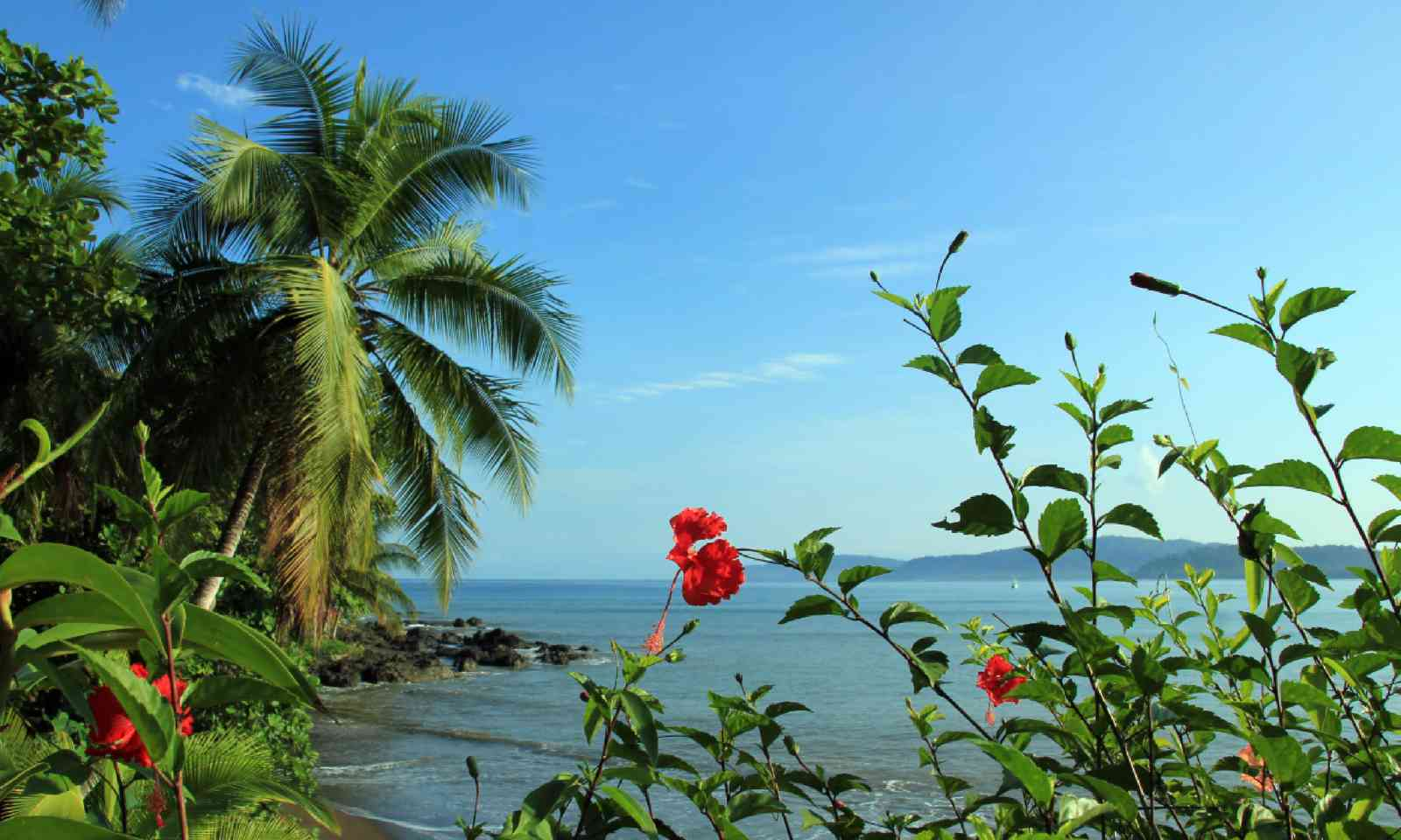 Drake Bay in Osa Peninsula (Shutterstock)
