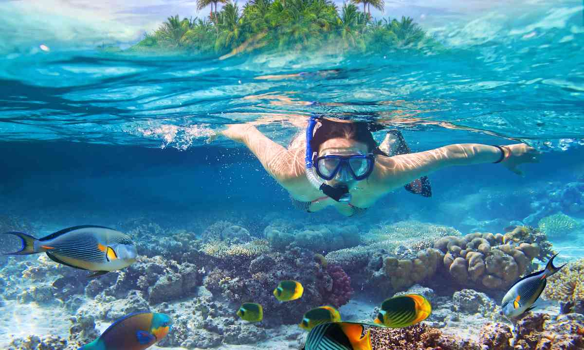 Woman diving in tropical waters (Shutterstock.com)