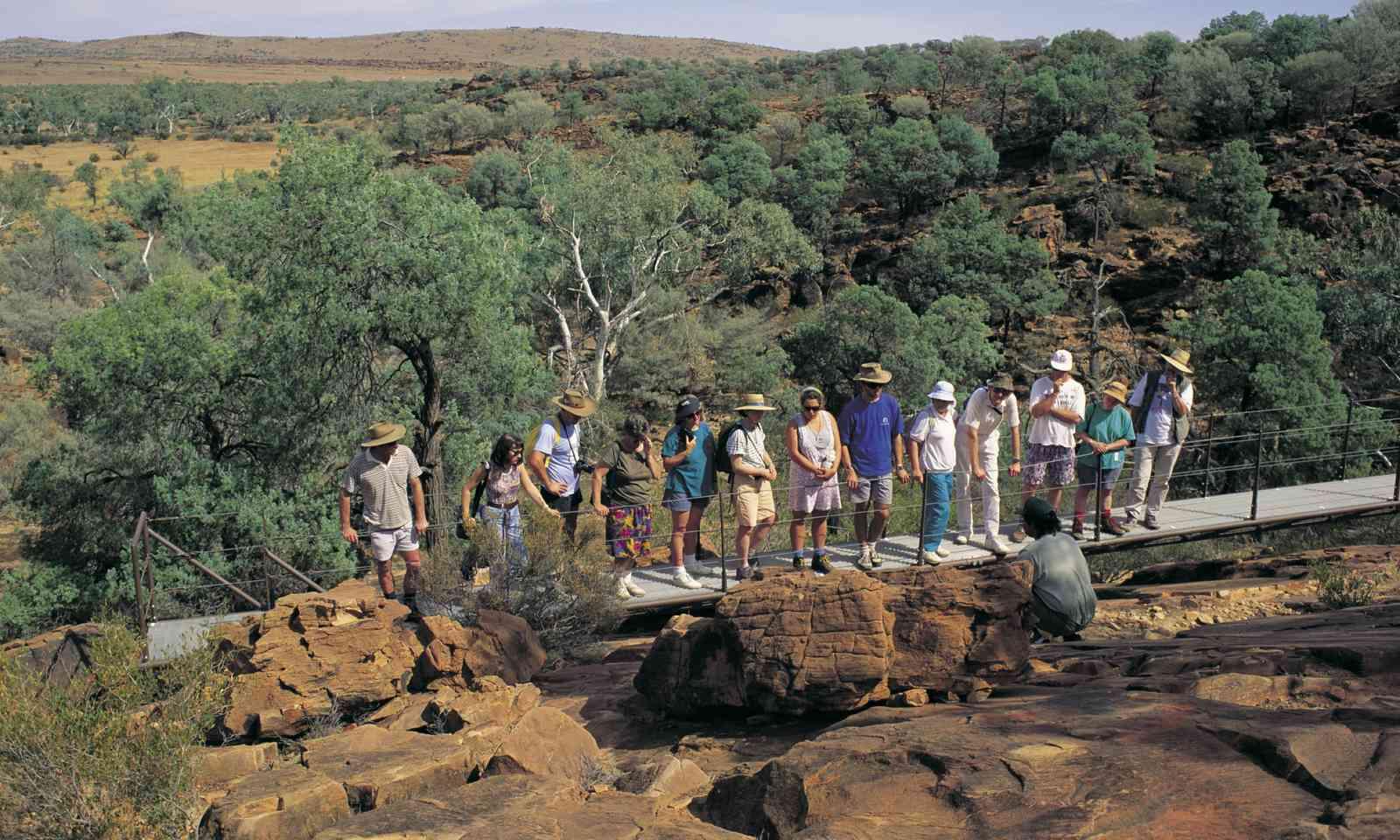 Exploring Mutawintji National Park (Hamilton Lund/Destination NSW)