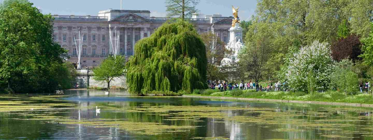 Buckingham Palace and the St James Park Lake in Spring