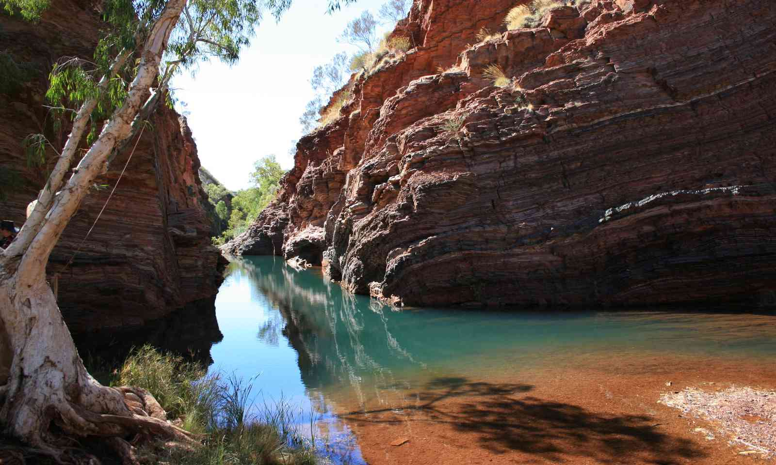 Hamersley Gorge, Karijini National Park (Dreamstime)