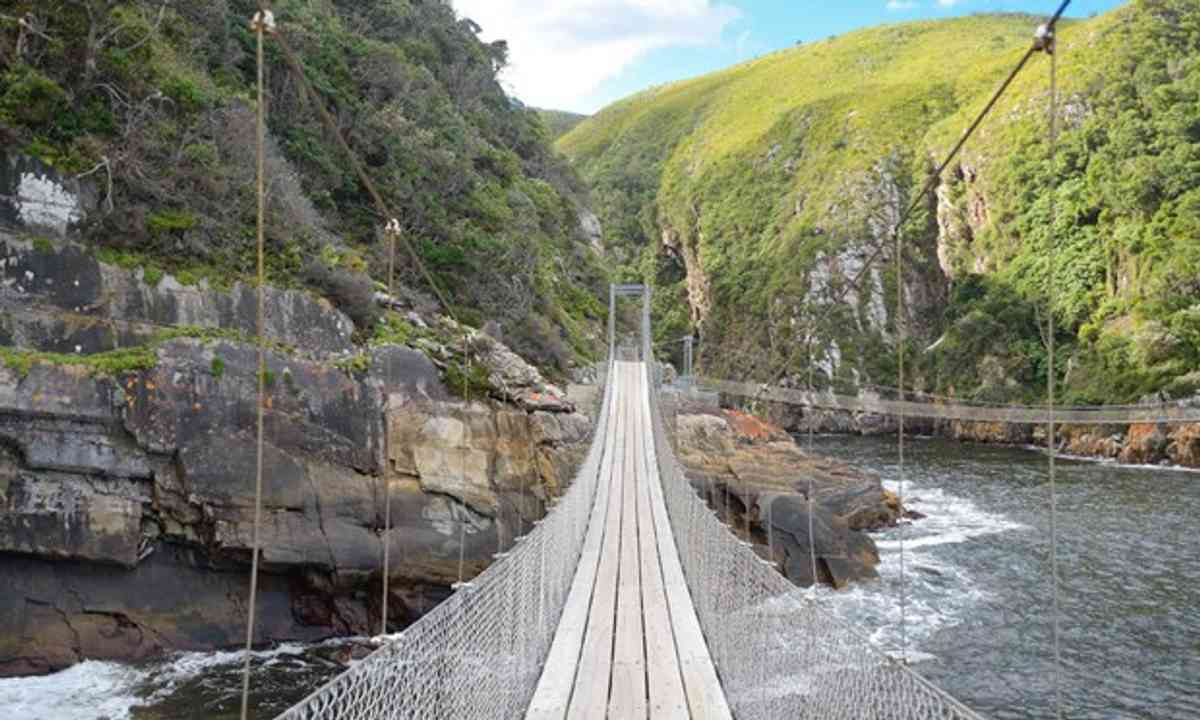 Walking bridge South Africa (Shutterstock.com)