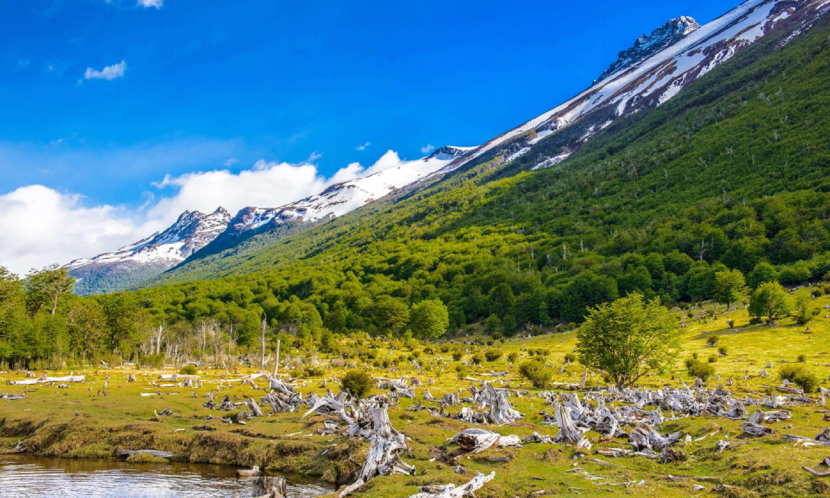 Landscape of Tierra del Fuego National Park (Shutterstock)