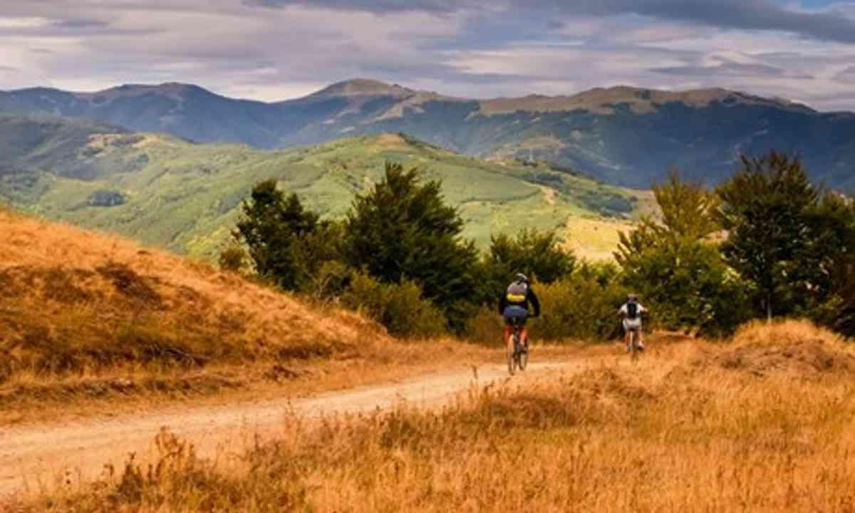 Cycling through nature (Shutterstock.com)