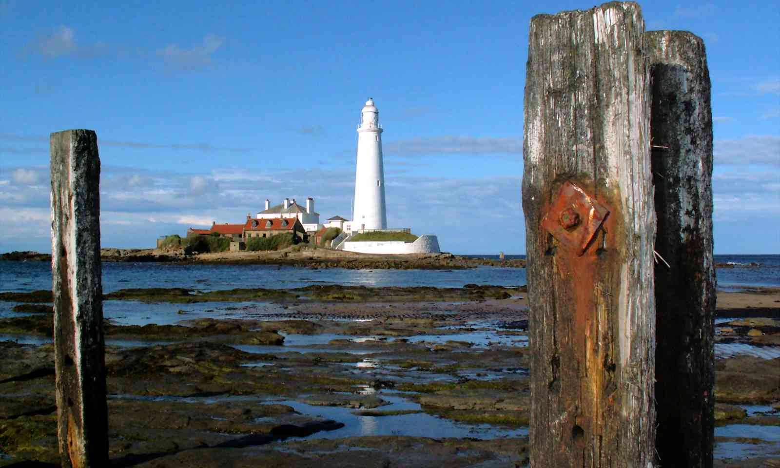 St Mary's Lighthouse (Dreamstime)