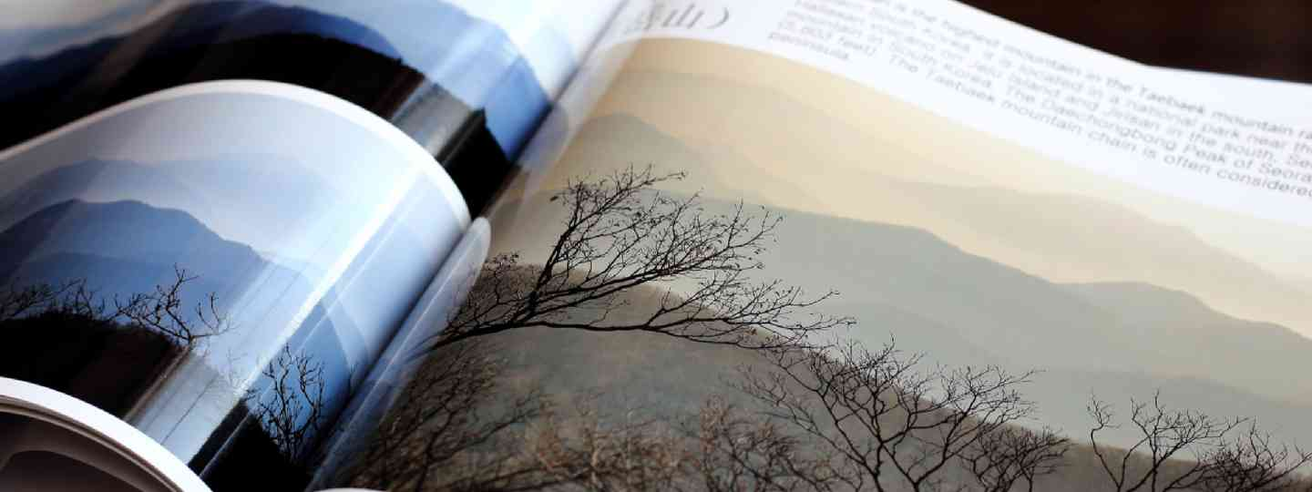 Section of photobook (Shutterstock: see credit below)