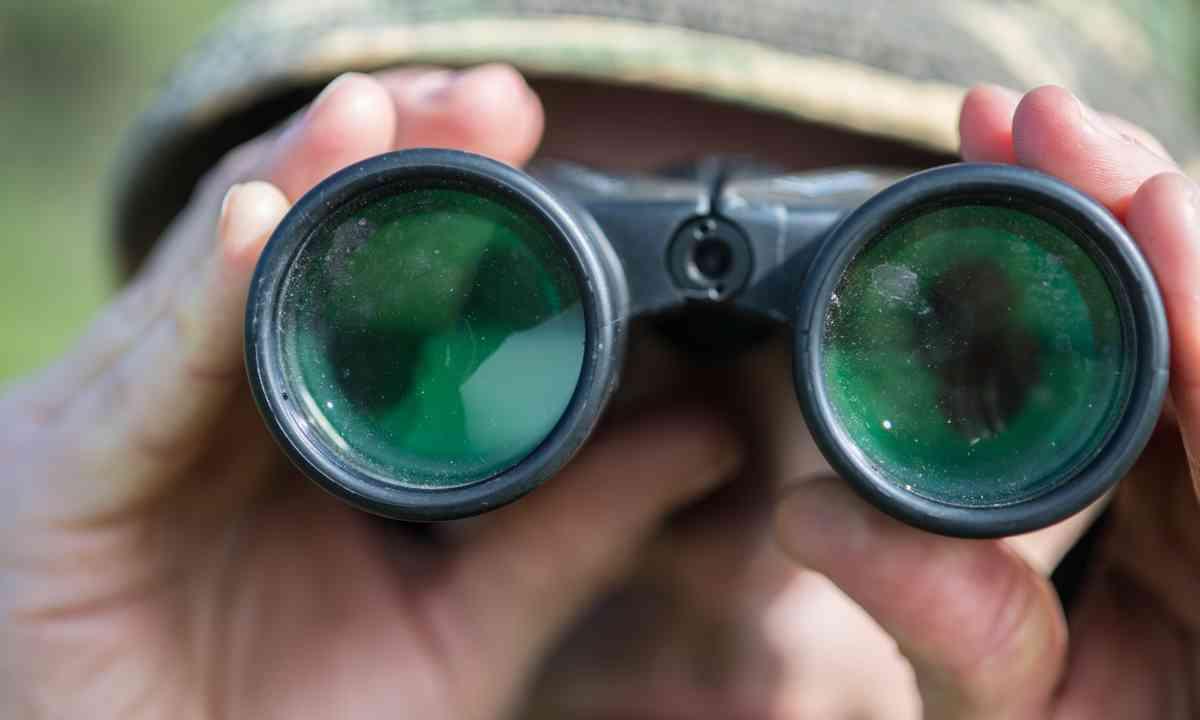 Closeup of birdwatcher (Shutterstock.com)