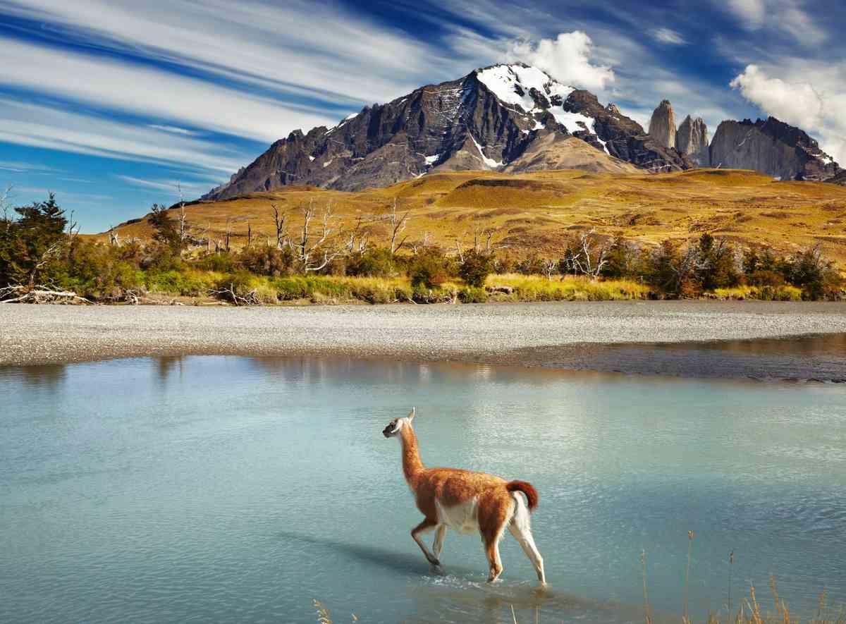 Torres del Paine NP (Dreamstime)