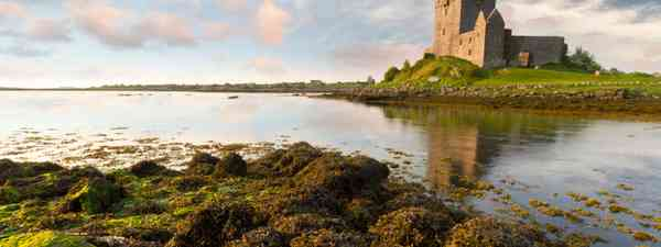 Dunguaire castle, County Galway (Shutterstock.com. See main credit below)